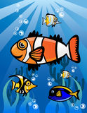 Underwater world Cartoon Illustration Royalty Free Stock Image