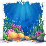 Underwater world with coral reef -  illustration. Beautiful coral and colorful reefs and algae on sand. Vector illustration of sea landscape Royalty Free Stock Images