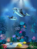 Underwater World. The underwater world with dolphins and plants Royalty Free Stock Image
