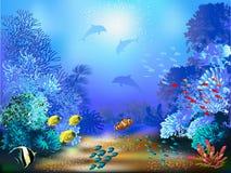 Underwater World Stock Image