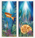 Underwater world two banners with golden fish and. Seashell vector Stock Photo