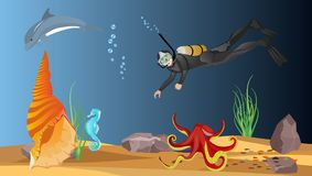 Underwater world vector illustration, sea depth and it`s habit ants. Vector illustration. Diver, octopus, fishes Stock Photo
