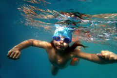 Underwater16 Royalty Free Stock Photo
