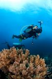 Underwaterphotographer in action. Above reef. Indonesia Sulawesi Stock Images