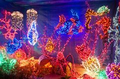 Free Underwaterr Aquarium Fish Scene Christmas Holiday Lights At Nigh Stock Photography - 133867162