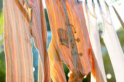 Underwear drying on the clothesline. In sun Royalty Free Stock Image