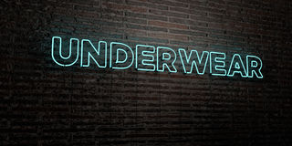 UNDERWEAR -Realistic Neon Sign on Brick Wall background - 3D rendered royalty free stock image Stock Photos