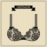 Underwear vintage lace background floral ornament Stock Image