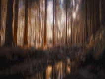 Undeutliche Waldlichtung mit Wasserstromreflexionen, Bäume, Holz, Wald, für Hintergrund Schöne Natur im Fall lizenzfreies stockbild