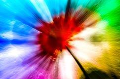 Undeutlicher, abstrakter Schuss der roten Blume auf regnerischem Fenster Lizenzfreie Stockfotografie