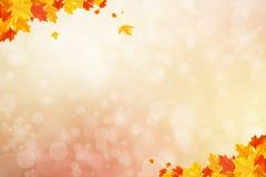 undeutlicher Kreis des Herbsthintergrundes glühendes bokeh Lizenzfreie Stockfotografie