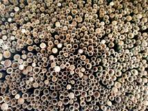 Undeutliches Backgroud von Löchern des Schnitts des abstrakten Bambushintergrundes stockfoto