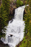 Undine Falls at High Flow Royalty Free Stock Photo
