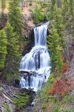 Undine Falls in Yellowstone Stock Photography