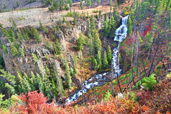 Undine Falls Yellowstone National Park Royalty Free Stock Photos