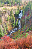 Undine Falls Yellowstone National Park Stock Images