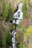 Undine Falls in Yellowstone National Park Royalty Free Stock Photography