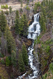 Undine Falls in Yellowstone Royalty Free Stock Photography