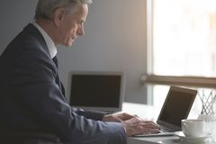 Undistracted senior male using laptop. Side view concentrated old businessman typing in keyboard of notebook computer while sitting at table. Focused worker in Stock Images