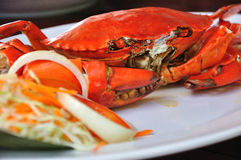 Undressed roasted crabs prepared on plate Royalty Free Stock Photos