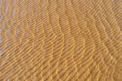Undulate. Beach sand bottom ripple of water waves Stock Photography