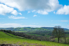 Undulating Countryside of Somerset. Scenic View of the Undulating Countryside of Somerset stock images