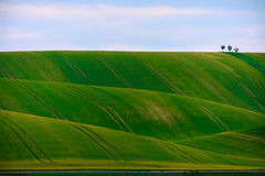 Undulating farm land  Stock Photos