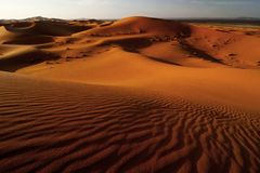 Undulating sand dunes in sahara desert Stock Photos