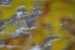 Undulating Water Bubbling Stream Royalty Free Stock Image