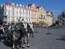 Une équipe des chevaux à la vieille place à Prague Photographie stock