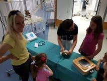Une ambulance de nounours pour les enfants et ses jouets Image libre de droits