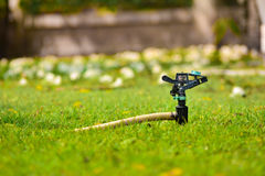 Une arroseuse sur l'herbe Photo stock