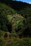 Une autre agriculture Photo stock
