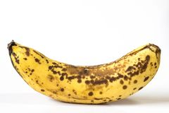 Une banane jaune mûre entière avec des anthracnoses et des contusions sur sa peau photo dans le blanc images stock