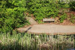 Une banque en bois sur l'étang parmi des buissons et trees1 Photographie stock
