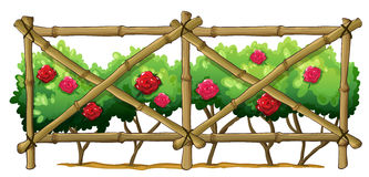 Une barrière en bambou avec les usines fleurissantes Photographie stock libre de droits