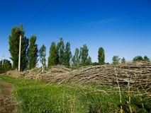 Une barrière faite de branches d'arbre Image stock