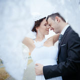 Une beaux mariée et marié Photo stock