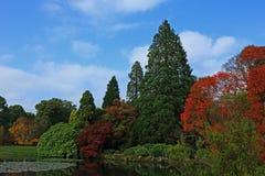 Une belle et colouful scène de région boisée d'automne photos libres de droits