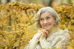 Une belle femme d'une cinquantaine d'années Image stock