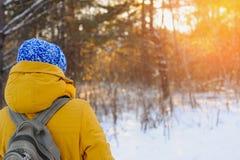 Une belle femme voyage pendant l'hiver Images stock