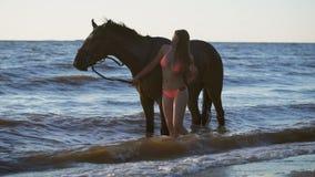 Une belle jeune femme sexy blonde se tenant à côté d'un cheval à un lac clips vidéos