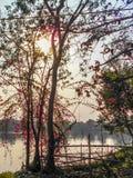 Une belle soirée près d'un lac Image stock