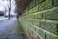 Une belle, vieille barrière de brique, verdissent avec l'humidité, sur un fond des arbres, rues et maisons, dans une petite ville photographie stock