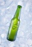 Une bière froide Photographie stock libre de droits