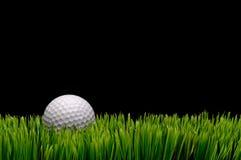 Une bille de golf blanche dans l'herbe verte Photographie stock libre de droits