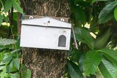 Une boîte aux lettres en bois de forme de maison accrochant sur un arbre Images stock