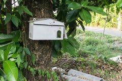 Une boîte aux lettres en bois de forme de maison accrochant sur un arbre Photos libres de droits