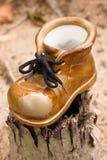 Une botte de trekking de Brown Photographie stock libre de droits