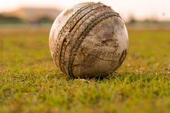 Une boule fortement utilisée pour jouer au cricket, se trouvant sur le terrain de jeu l'Inde photos libres de droits